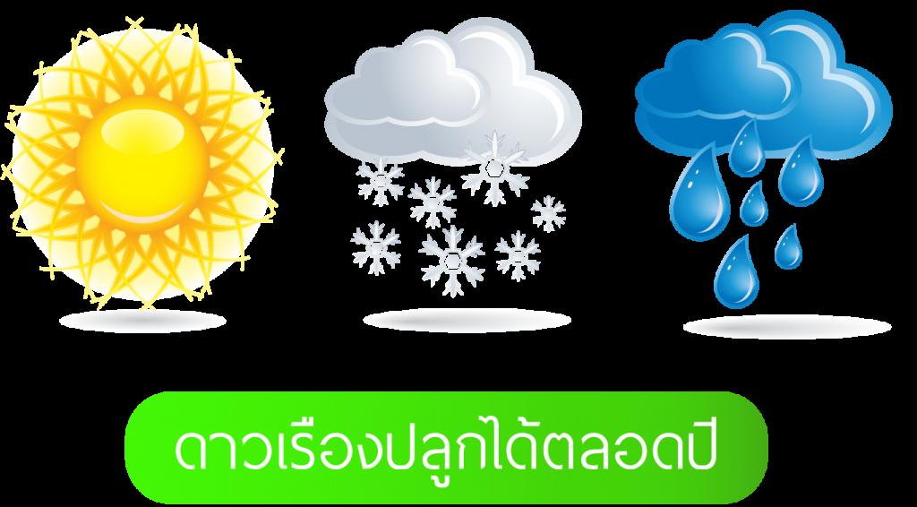 LOGO-ร้อน-ฝน-หนาว