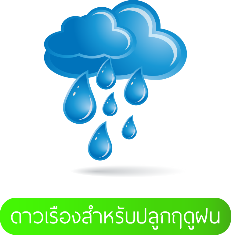 LOGO-ฝน